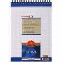 GIPTA - GIPTA A5 PRISMA SPİRALLİ BLOKNOT 100yp KARELİ